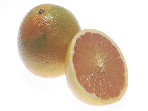 Grapefruit coop