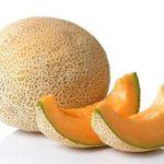 melon kampos